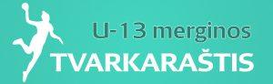 U13_tvark_mot